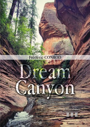 Frédéric CONROD - Dream canyon